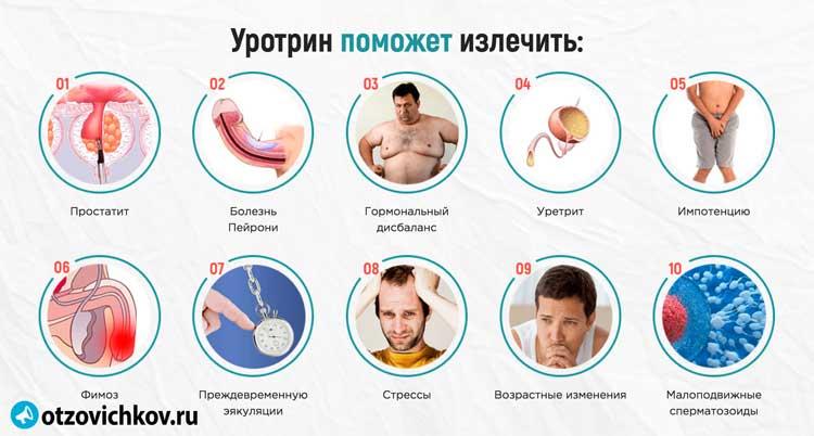 Лечу простатит импотенцию грецкий орех в лечении простатита