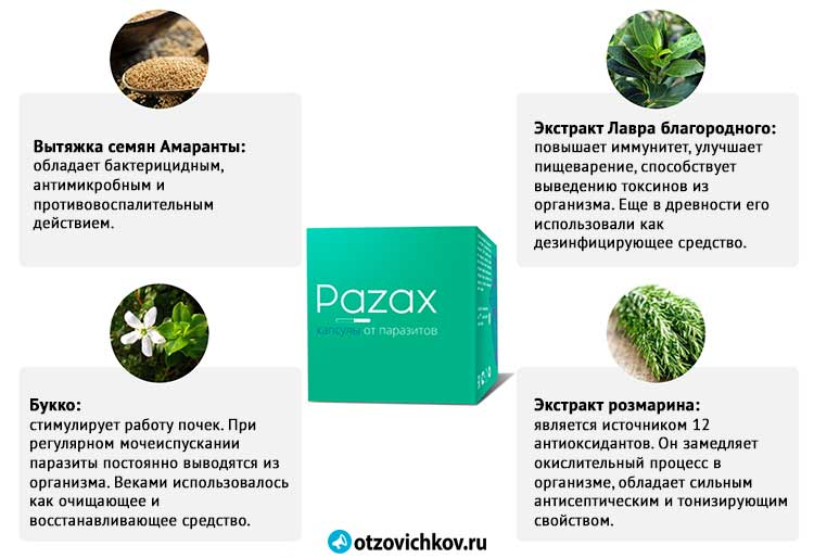 препарат pazax