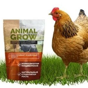 animal grow