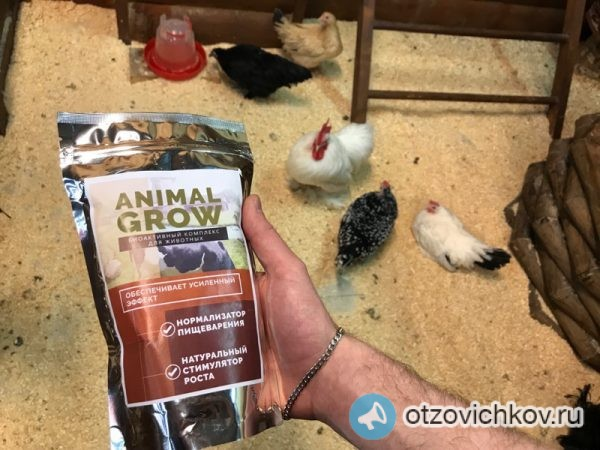 animal grow биоактивный комплекс для животных